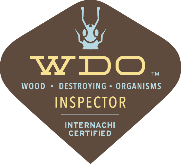WDI Termite Inspection East Long Island