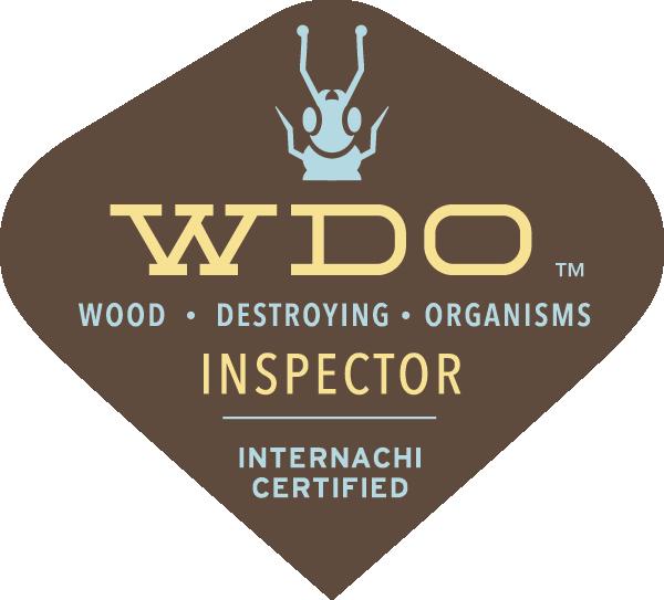 WDI Termite Inspection East Long Island